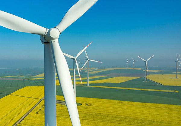 Farma wiatrowa Wielkopolska
